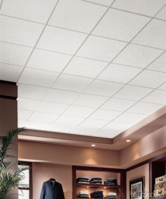 Armstrong Ceiling Tiles Distributors Aunt Suefo
